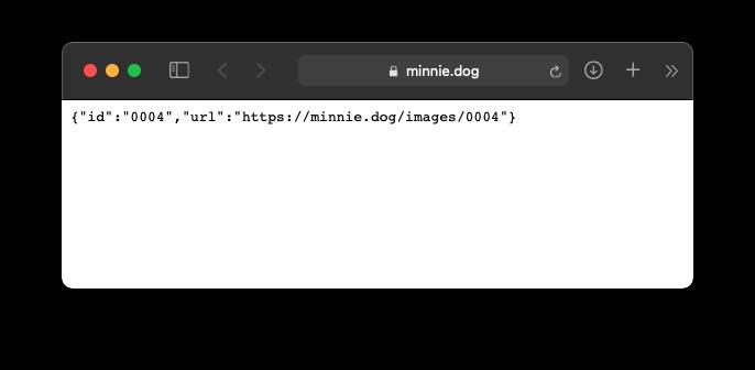 https://cloud-51fh21hop-hack-club-bot.vercel.app/0minnie.dog_api.png